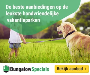 BungalowSpecials honden banner
