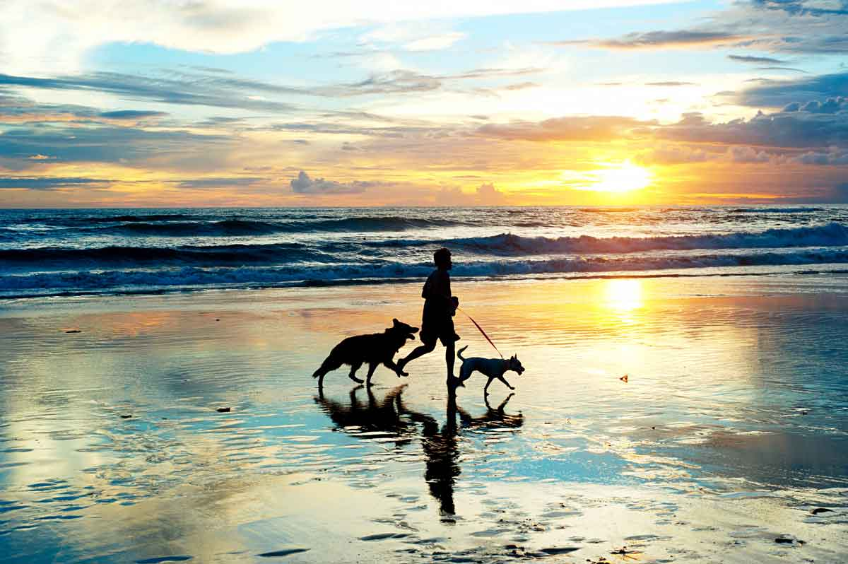 zeeland lopen op het strand