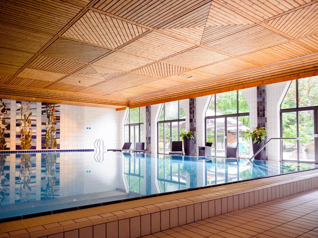Fletcher hotel met hond Epe   Veluwe   Gelderland binnenzwembad