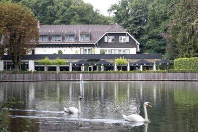 Hotel met hond midden in het bos | Bilderberg hotel De Bovenste Molen | Venlo
